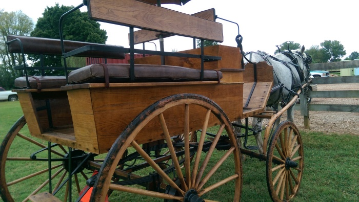 Wagonette/carriage